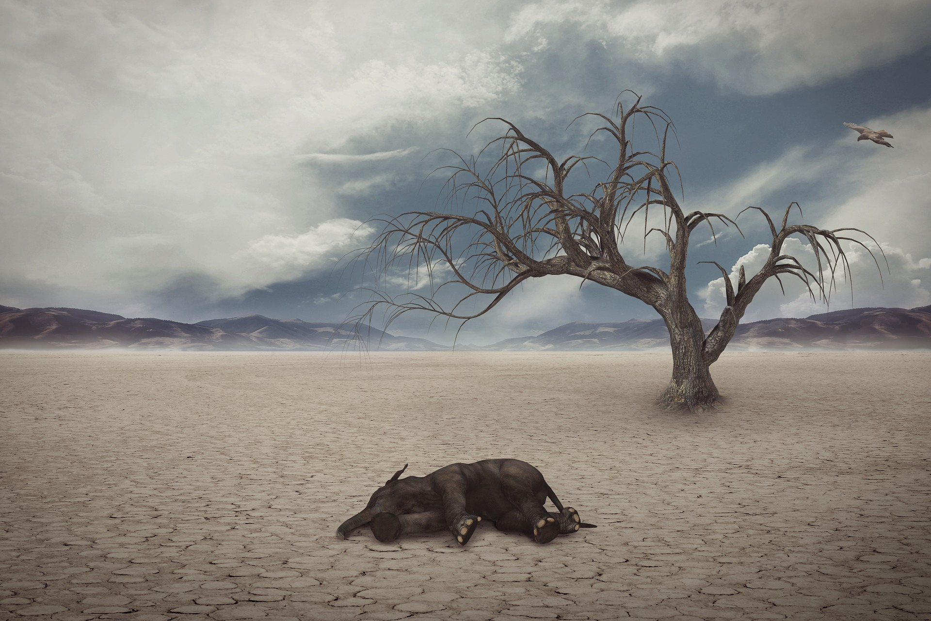 drought-1733889_1920