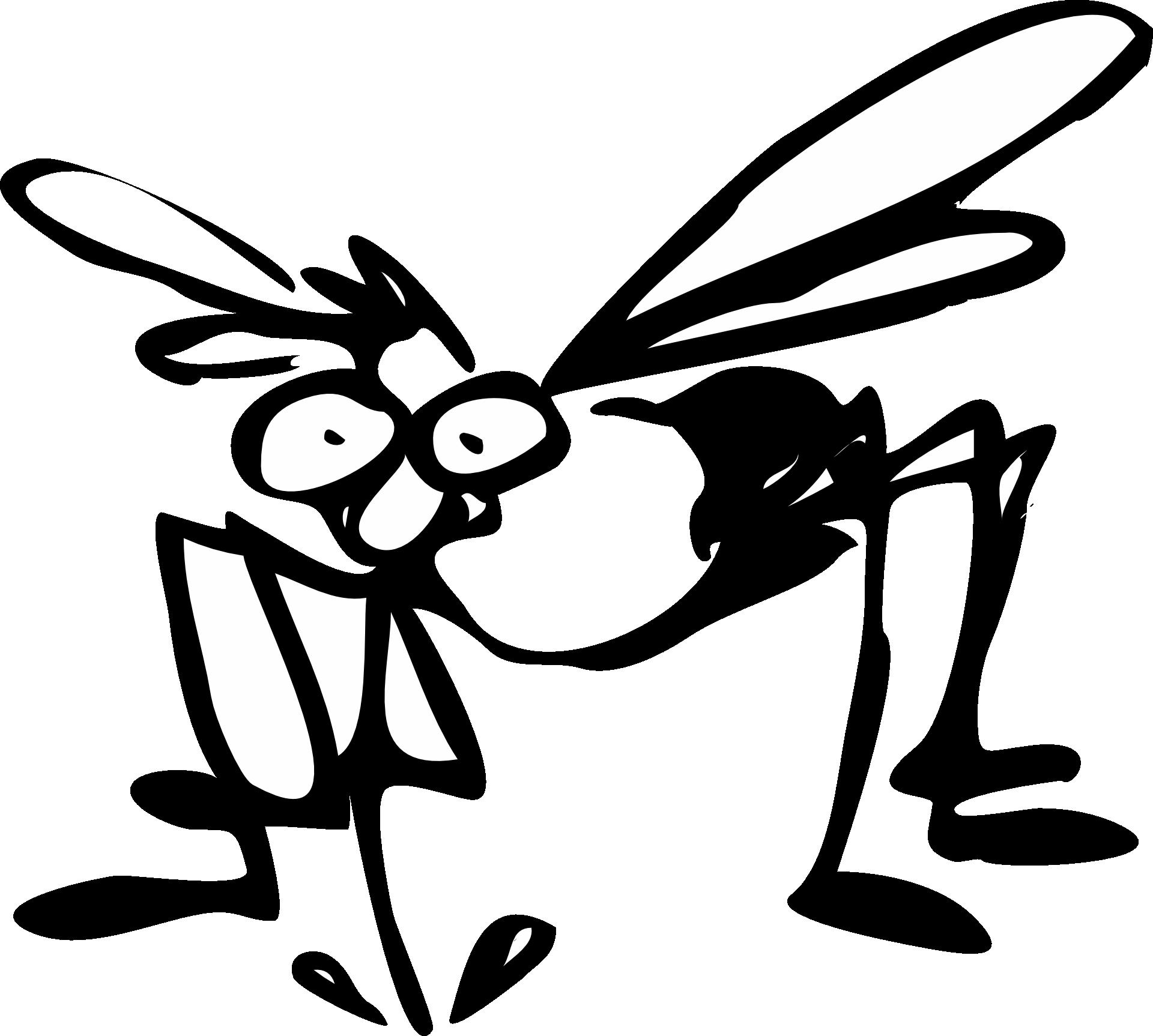 mosquito-48313