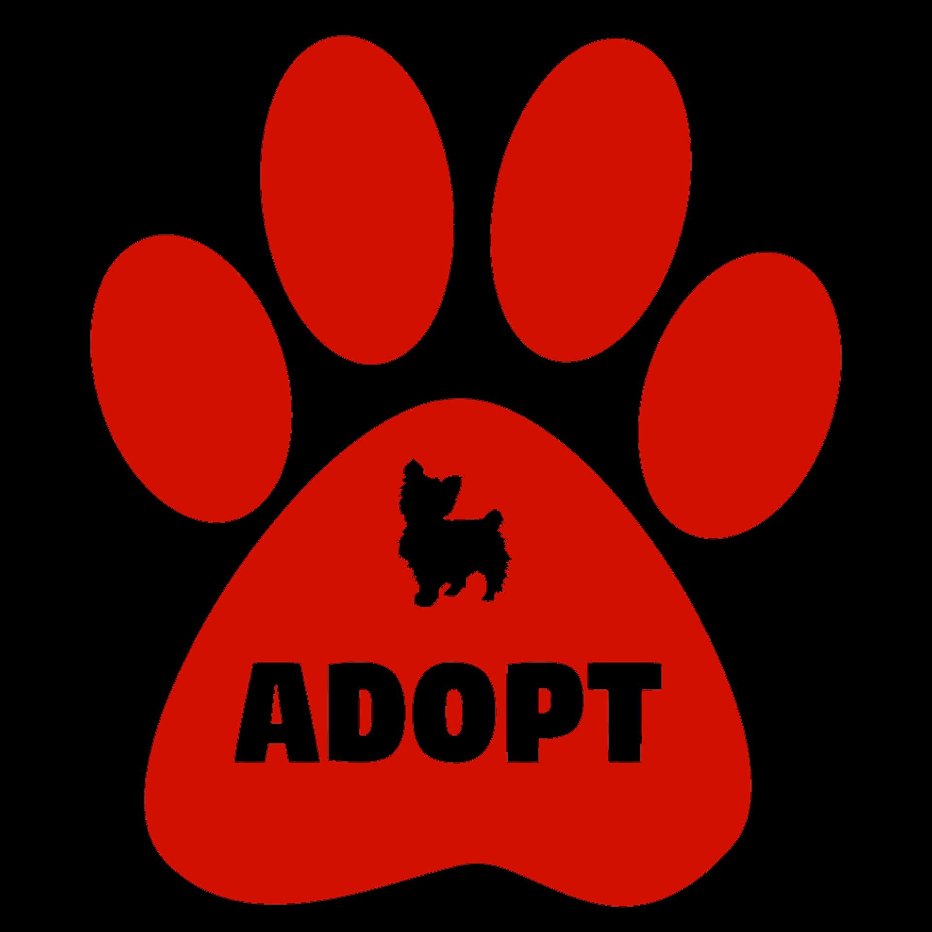 adopt-2167903_1920
